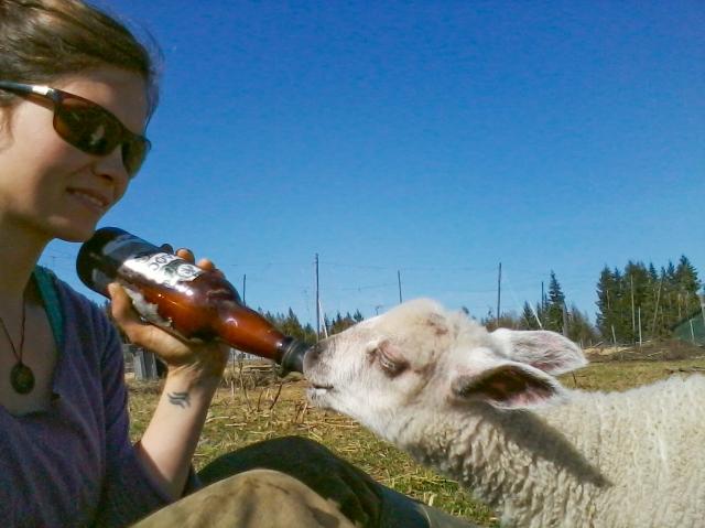 Crannog Ales + Farm-5